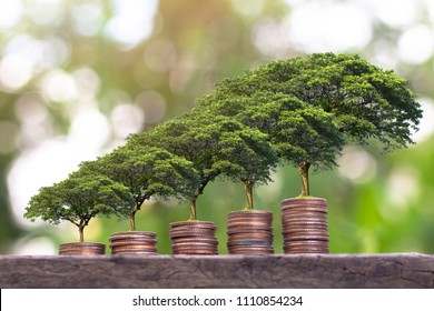 Plant growing  on Money coin stack . Saving money concept. finance sustainable development . economic growth.