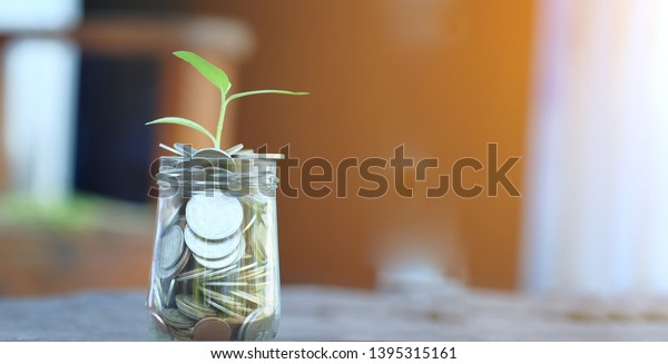 Plant Growing Over Money Coins Jar Stock Photo Edit Now 1395315161