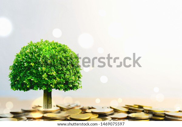 Plant growing in savings coins stack. Pension fund, Passive income. savings and making money. Investment and retirement. Business investment growth concept. Risk management. 401k.