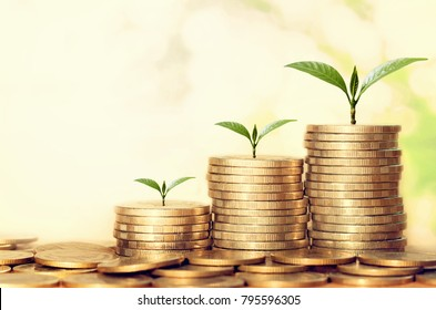 plant growing step of money stack with sunshine. concept finance and accounting