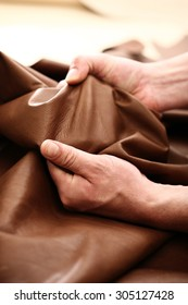 The plant leather craftsman. Hands tailor to check the quality of the material