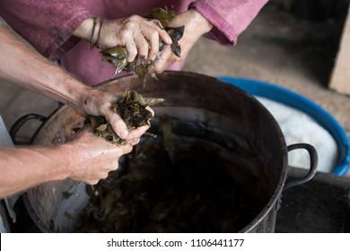 Plant Medicine in Peru