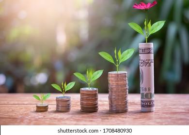 Anlageinstrumente sparen Wachstum bis zu Gewinnzinsen für Konzeptinvestitionen, Investmentfonds und Unternehmen