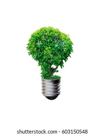 plant on base of bulb, environment concept isolated on white background with clipping path