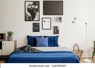 Plant on cabinet next to navy blue bed in bedroom interior with white lamp and gallery. Real photo