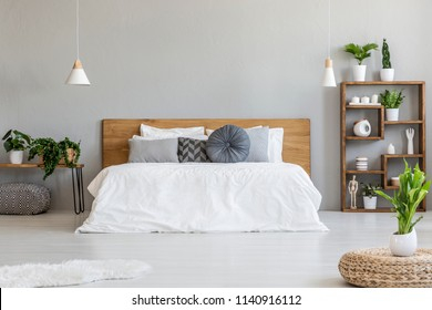 Plant on pouf in bright bedroom interior with pillows on bed with wooden headboard. Real photo