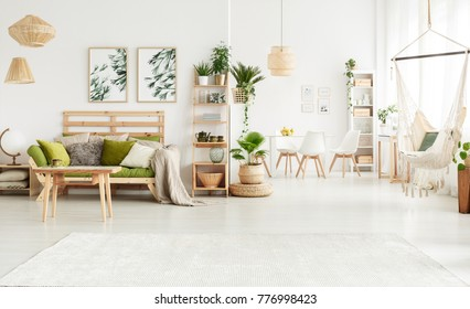 Plant on pouf and leaves posters in bright open space interior with green couch, hammock and white chairs at a table