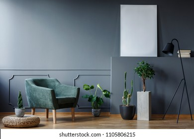 Plant on pouf next to green armchair in grey flat interior with mockup of poster. Real photo