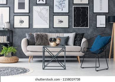 Plant on pouf next to sofa in grey living room interior with table, armchair and posters. Real photo
