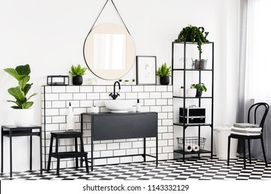 Plant on table and black chair in white bathroom interior with mirror above washbasin. Real photo