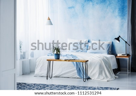 Plant on wooden table in front of bed with blue cushions in bedroom interior with black lamp