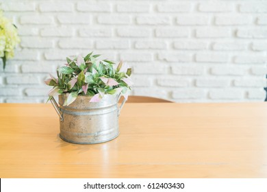 plant in pot decoration on dinning table