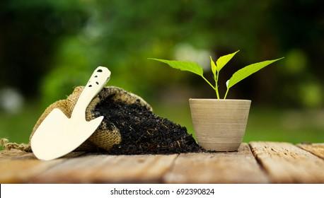 plant pot with fertilizer bag over green background, Summer garden concept