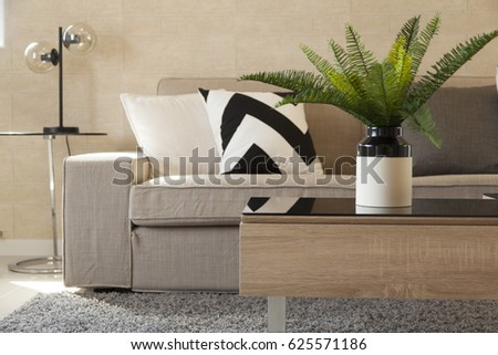 plant pot on table in livingroom