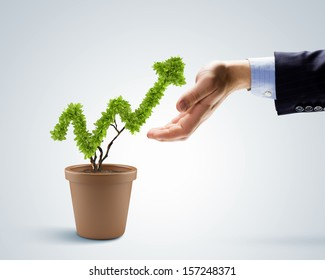 Plant in pot shaped like graph. Wealth concept