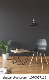 Plant, simple chair and wooden coffee table set on black, empty wall in living room interior