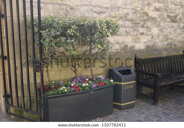 Surprising Plant Stand Flower Pot Garbage Bin Stock Photo Edit Now Gmtry Best Dining Table And Chair Ideas Images Gmtryco