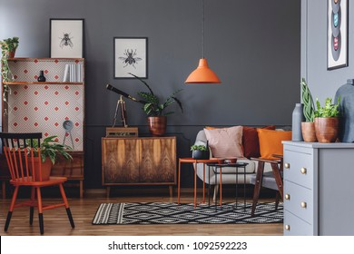 Plant and telescope on wooden cabinet next to a sofa in rustic living room interior with orange lamp