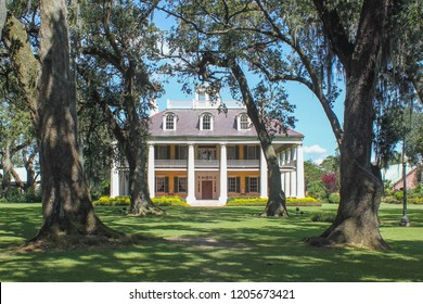 Plantation house framed by trees