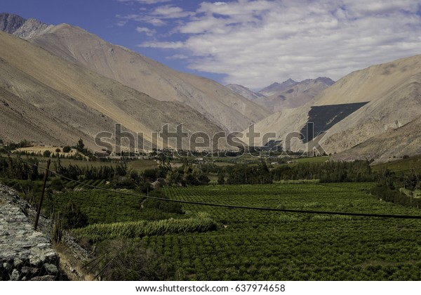 Plantation under big mountains and a cloudy sky in Valle de Elqui in Chile