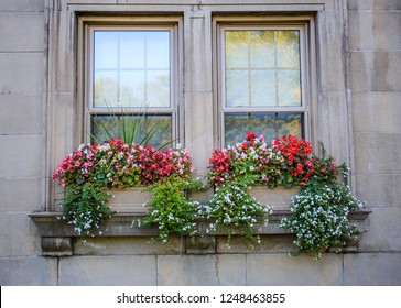 Planter boxes on the old, stone brick window ledge of a historic house are overflowing with colorful flowers in Montreal, Canada.