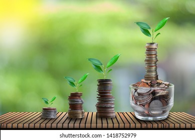 Planting from coins Business growth concepts