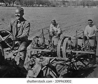 Planting cotton on the Navai collective farm, near Tashkent, Uzbekistan, USSR. Ca. 1935-40.