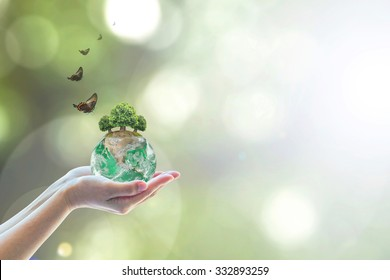 Planting green globe and arbor tree on volunteer's hand for saving environment nature conservation and csr corporate social responsibility go green concept: Element of the image furnished by NASA