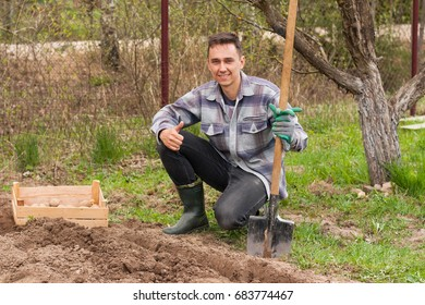 Planting Seedlings Potato. Happy Young Russian Male Gardener Half-Sits On Ground And Holding In His Hand Shovel, Next To Wooden Box With Seed Potato In Garden In Spring Day.