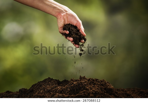 Planting a small plant on a pile of soil on green bokeh backgrou