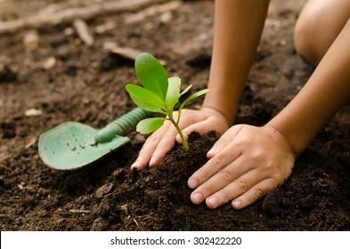 Junge Bäume von Kind zu Kind von Hand auf den Boden als Pflege und sparen Weltkonzept