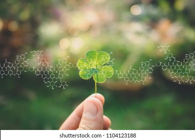 Plants background with biochemistry structure. Hand holding clover leaf.