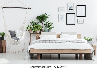 Plants behind wooden bed near hammock with pillows in natural bedroom interior with posters on white wall