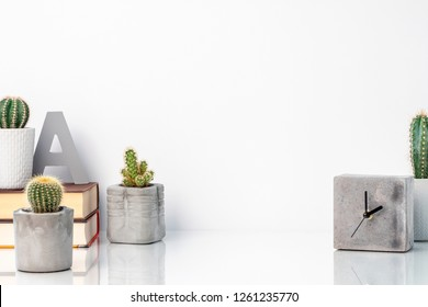 Plants, books and decorations with concrete elements for a trendy and modern white living room interior standing on white furniture with reflexion. Copy space white wall