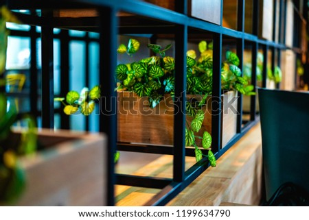 Plants In A Bookshelf With Black Bars