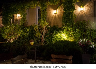 Plants of building wall. House at night. Exterior design idea.