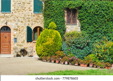 plants in a courtyard by a rustic house