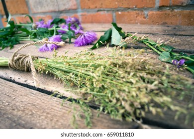 Plants and flowers on a wooden background with a rope