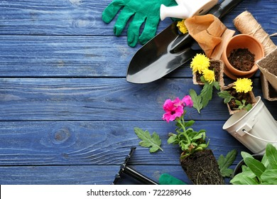 Plants and gardening tools on wooden background