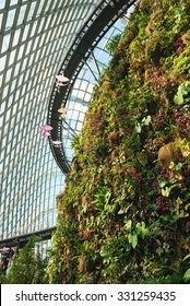 Plants growing from an artificial cliff face inside an enormous greenhouse, and an elevated catwalk for tourists and visitors.