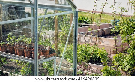 Plants Growing In Greenhouse. Vegetable Garden Sustainable Living