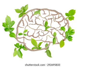 Plants with leaves forming brain isolated on white