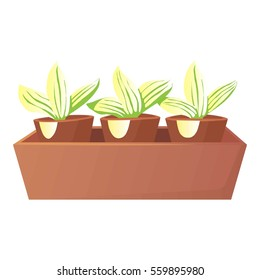 Plants in pots icon. Cartoon illustration of plants in pots  icon for web design