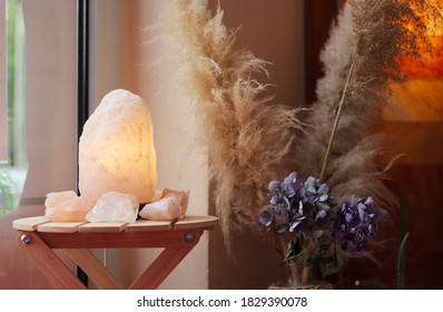 plants and saltlamp on wood infront of a window closeup macro