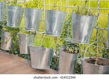 Plants in tin pots in a garden