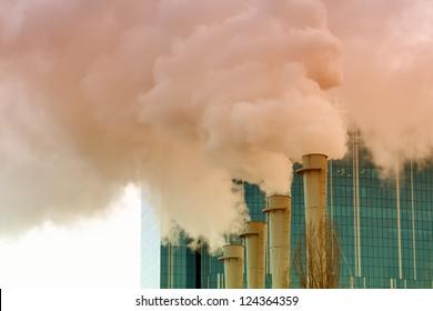 Plant's tubes with smoke