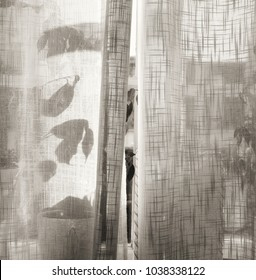 Plants in window behind a sheer linen ajar curtain in summertime, textured in black and white tones for a romantic feeling.