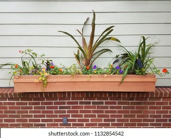 plants in wood flower pot or box with house siding and brick wall