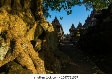 Plaosan Temple on central java