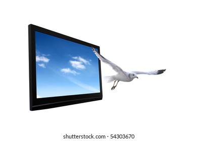 High Definition Images, Stock Photos & Vectors | Shutterstock